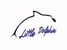小海豚游泳訓練中心